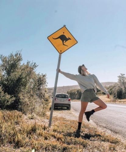 Exploring NSW